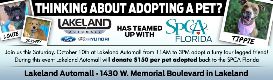 SPCA Lakeland and Lakeland Automall - What a Great Combination!